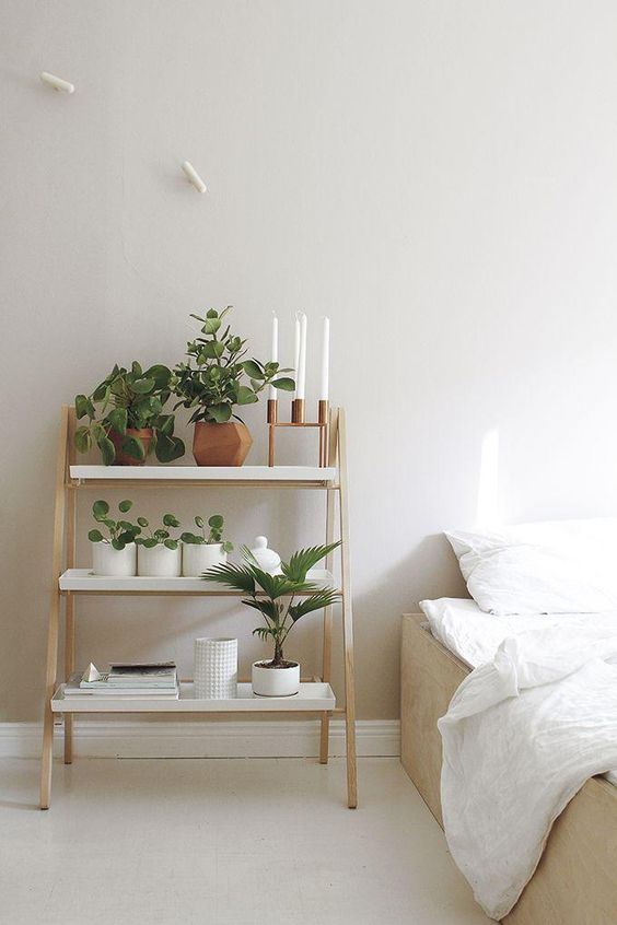8 HOUSE PLANTS YOU NEED IN YOUR BEDROOM FOR A GOOD NIGHT'S SLEEP